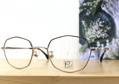 1本のメガネでサングラスにも
