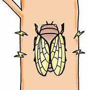 補聴器 蝉の鳴き声が聞こえるが・・・